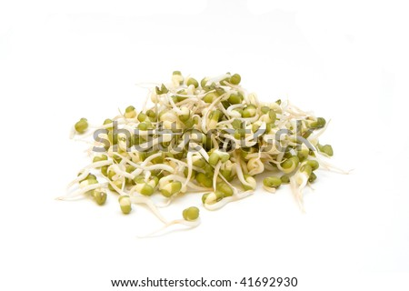 A pile of fresh bean sprouts isolated n a white background. - stock photo