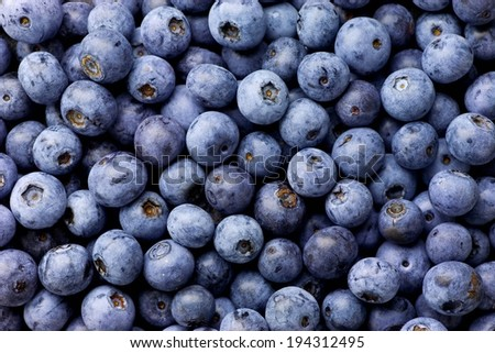 A pile of freshly picked, round, ripe blueberries. - stock photo