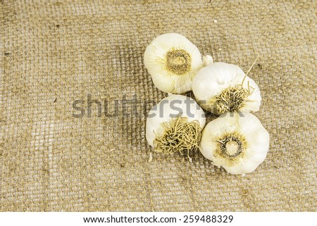 A pile of garlic sitting on a burlap background. - stock photo