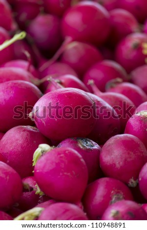 A pile of ripe and juicy radishes.
