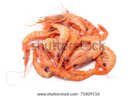 a pile of shrimps on a white background - stock photo