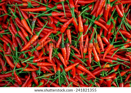 a pile of small, red, very hot and spicy chilli peppers on an asian market. - stock photo