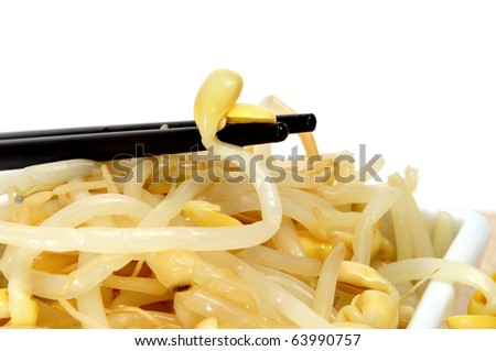 a pile of soybean sprouts isolated on a white background - stock photo