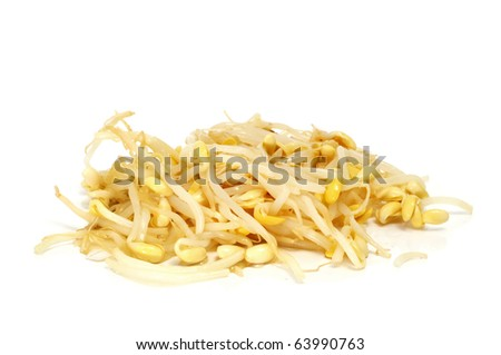 a pile of soybean sprouts isolated on a white background