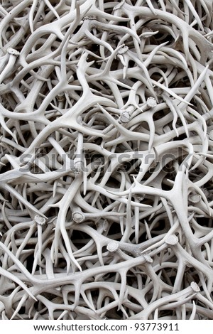 A pile of sun bleached elk antlers for background texture and pattern - stock photo