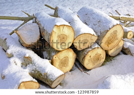 A pile of wood - stock photo