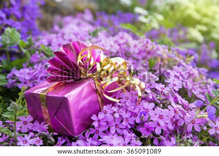 a pink gift atop a lot of lilacbush - stock photo