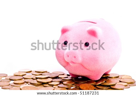 a pink pig stands on the coins isolated on white