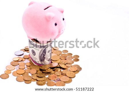 a pink pig stands on the dollars isolated on white - stock photo