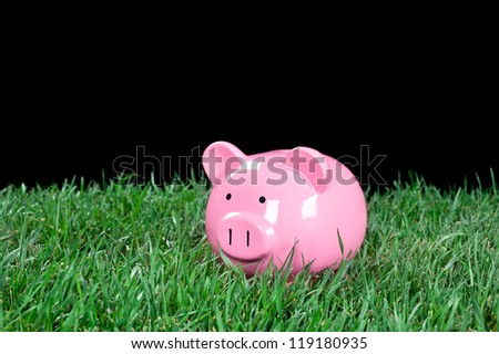 A pink piggybank in a field of green grass with a black background for placement of copy.