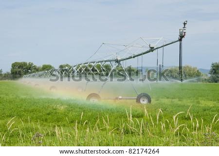 A pivot irrigation system waters an alfalfa field. - stock photo