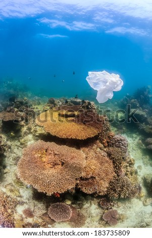 A plastic bag floats over a tropical coral reef creating a hazard to turtles and other marine life - stock photo