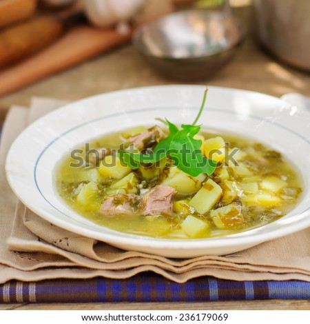 A Plate of Summer (Spring) Chunky Sorrel Soup, square