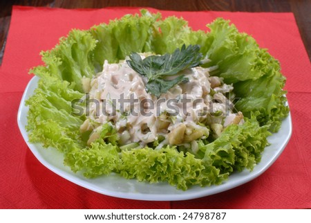 a plate of tasty juicy salad served with sause and decortaed with lettuce