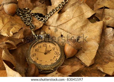 A pocket watch on some dead oak leaves and acorns for the changing of the autumn season. - stock photo