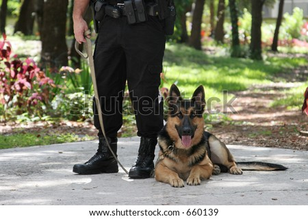 A police officer and his police dog. - stock photo