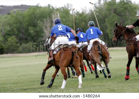 A Polo team chases after a shot during a Polo match (focus point on foreground player). - stock photo