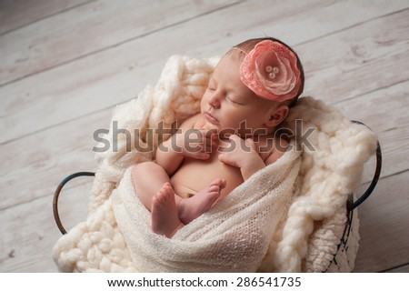 A portrait of a beautiful, seven day old, newborn baby girl wearing a large, fabric rose headband. She is swaddled with gauzy fabric and sleeping in a wire basket. - stock photo