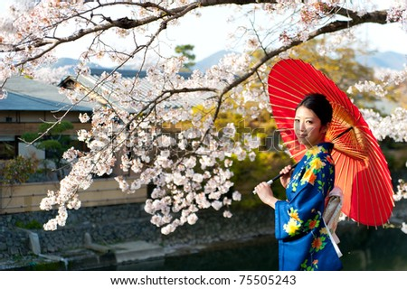 a portrait of japanese kimono woman and cherry blossom - stock photo