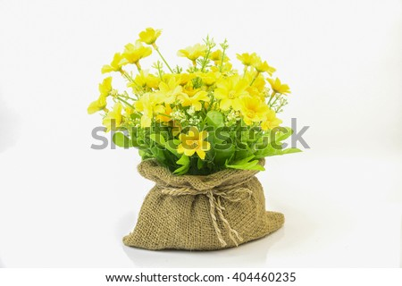 A pot of beautiful orange autumn chrysanthemums isolated on white background,beautiful bouquet of flower calendula officinalis in color plastic flowerpot,yellow chrysanthemum flowers in pot - stock photo