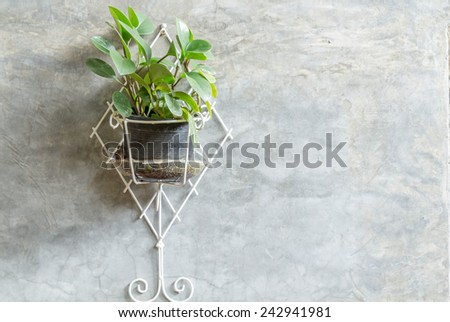 a pot of yellow flower hang on cement concrete wall - stock photo