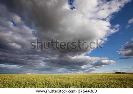 A prairie landscape with a dramatic cloudscape - stock photo