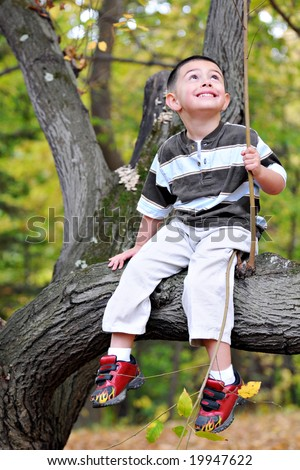A preschool boy sitting on a limb, looking up into the tree over him.  Shallow DOF with focus on eyes. - stock photo
