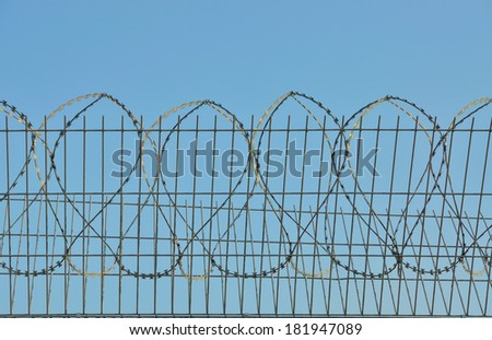 A prickly wire is on a background blue sky. - stock photo