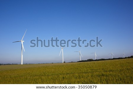 a procession of wind turbines across a barley covered hillside in the early morning light on a summer day