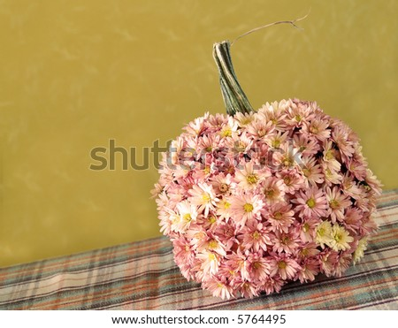 a pumpkin decorated with mums for autumn - stock photo