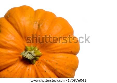 A pumpkin on white background - stock photo