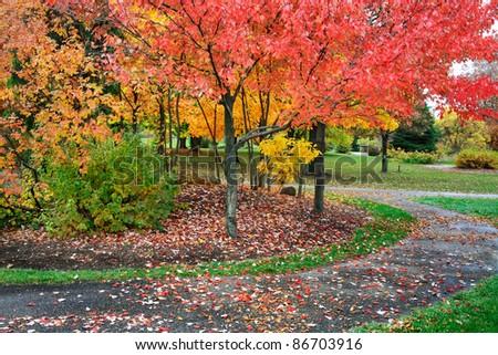 A Quiet Walking Path Through A Park / Arboretum On A Rainy Day In Autumn, Southwestern Ohio, USA - stock photo