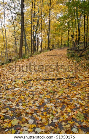 A Quiet Walking Path Through The Woods In Autumn, Sharon Woods, Southwestern Ohio