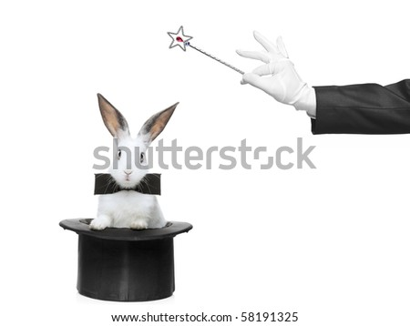 A rabbit in a hat and hand holding a magic wand isolated on white background - stock photo