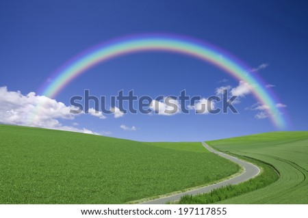 A Rainbow And A Single Path In A Grassland