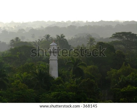 A rainforest in Panama during a shower - stock photo