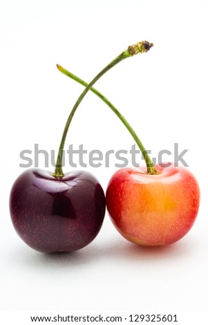 A rainier and black cherry isolated on a white background. - stock photo
