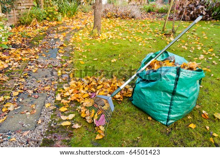 A rake and sack of collected autumn leaves in a small garden.