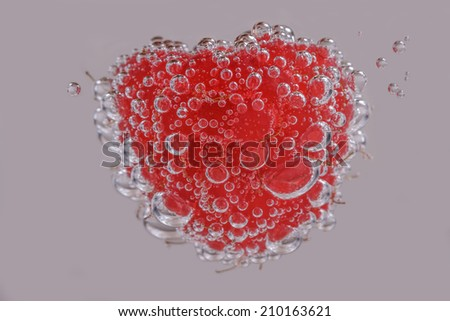 A Raspberry in Clear Fizzy Water with Bubbles  - stock photo