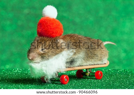 A rather festive skateboarding mouse.