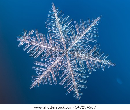 a real snowflake macro lies on a blue background, as if flying in sky - stock photo