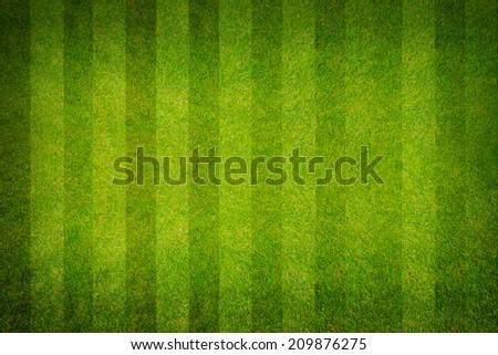 A realistic textured grass football , green natural grass of a soccer field - stock photo