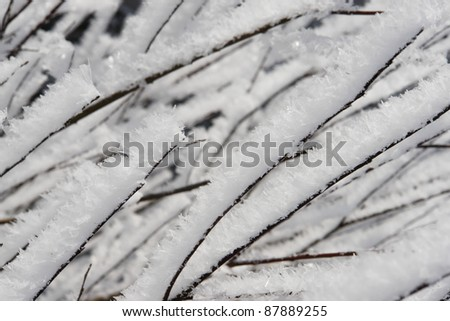 a red bauble in snowy winter landscape - stock photo