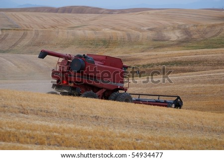A red combine cuts golden wheat during the late summer harvest in the Palouse, eastern Washington's wheat growing region.