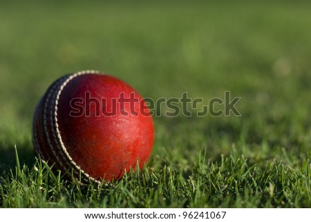 A red cricket ball on green grass background