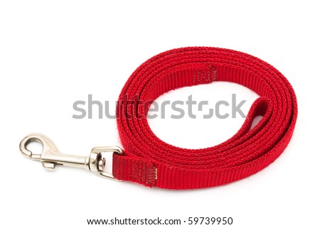 A red dog leash isolated on a white background, walking the dog - stock photo