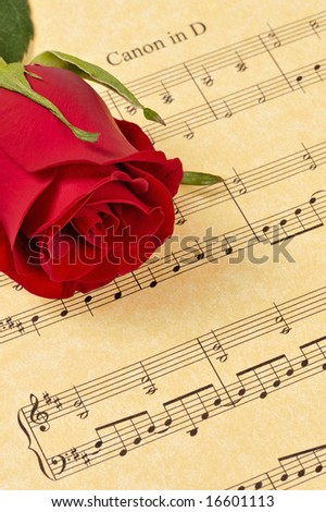 A red rose bud rests on Pachelbel's 'Canon in D' sheet music (parchment paper). Focus is on the rose bud.