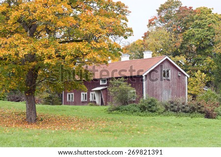A red wooden cabin beyond a huge tree. Colorful trees and lawn. - stock photo