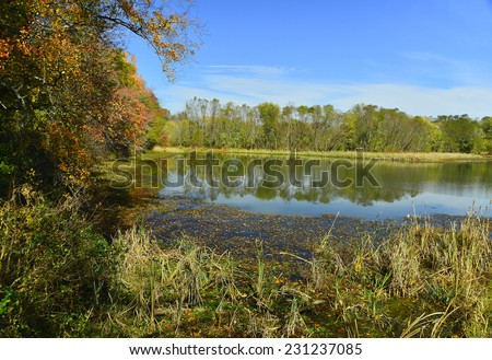 A reflection of the beauty of autumn in Lake Conestee near Greenville, SC. - stock photo