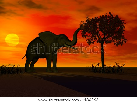A rendering of an elephant feeding - stock photo